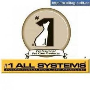 italsystem