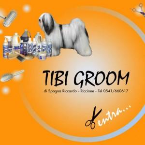 tibi groom