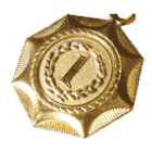 medaglia immagine
